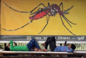 211 dengue cases in Delhi this year; 53 in last 1 week