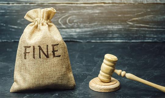 property dispute Delhi court fine